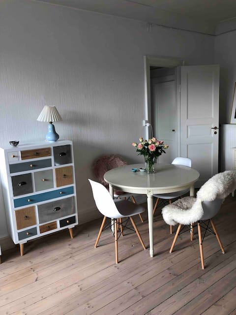 Lovely and bright apartment  close to everything