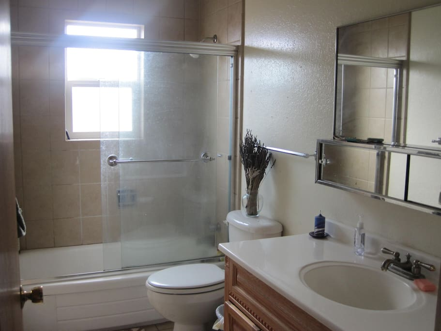 Private guest bathroom, full shower and bathtub