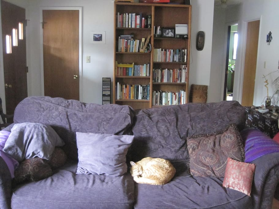 living room couch and library