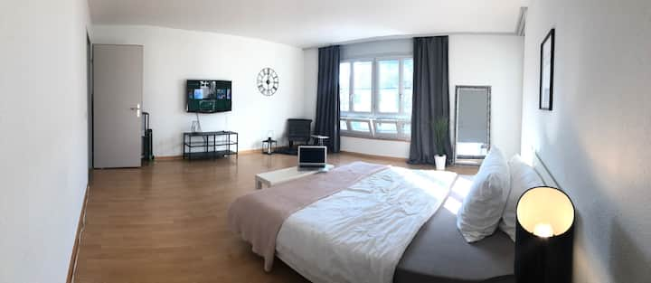 clean and stylish apartment near from zürich