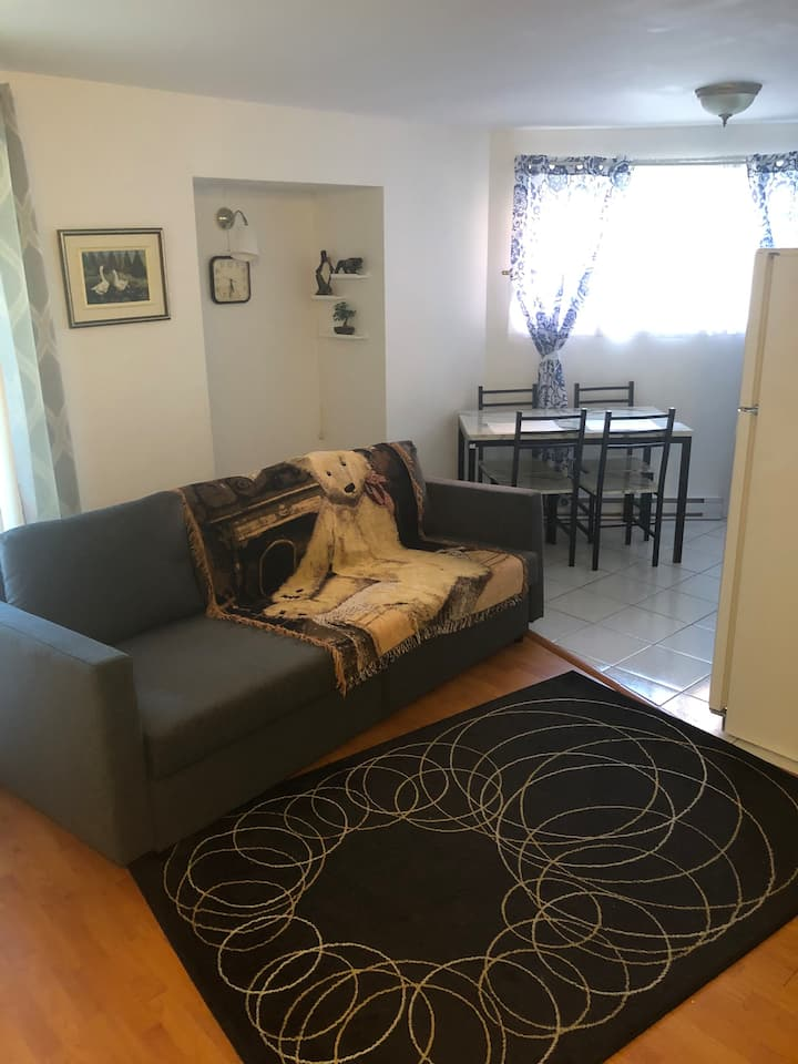 Humble 1BR Condo. 20 mins to/from Airport
