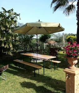 Etna Sweet Home loft con giardino  - Santa Venerina