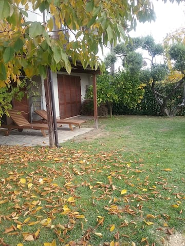 Villa con giardino tra gli ulivi