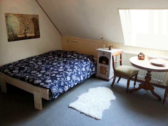 Knusse sfeervolle kamer aan Het Drents Friese Wold - Wapse - Dům