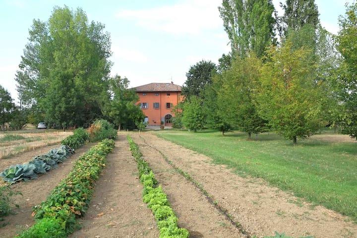 Appartamento con vista giardino in tenuta agricola - Piumazzo - Ev