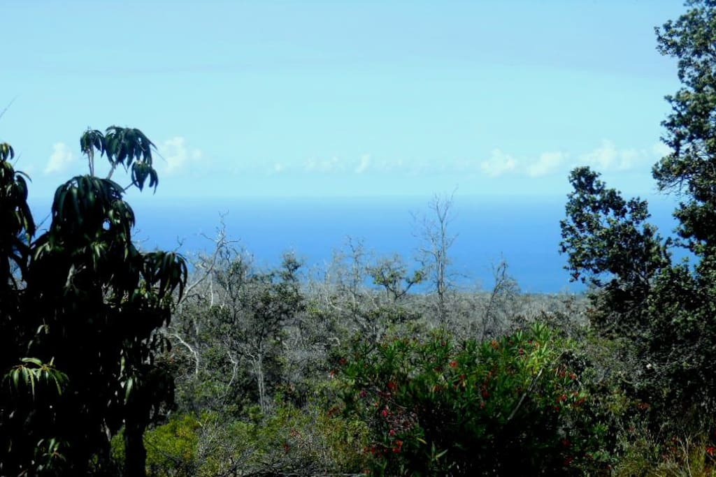Ocean view from front lanai