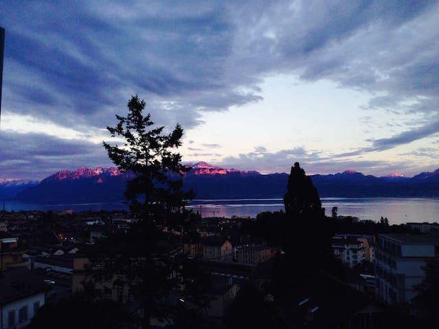 180° Lake view Lausanne city centre - Lausanne - Leilighet