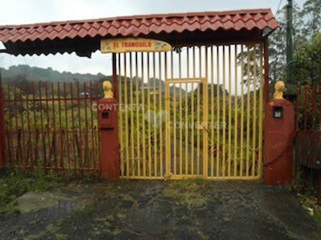 Electric gate to private Tranquil  Quinta. (Lodge and apatrments and Rustic charming Chalet
