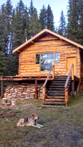 The Woody Creek Cabin - Cooke City-Silver Gate - กระท่อม