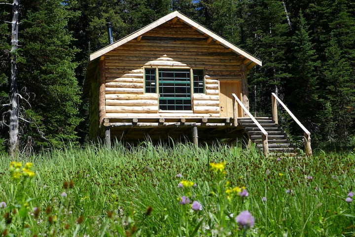 The Woody Creek Cabin