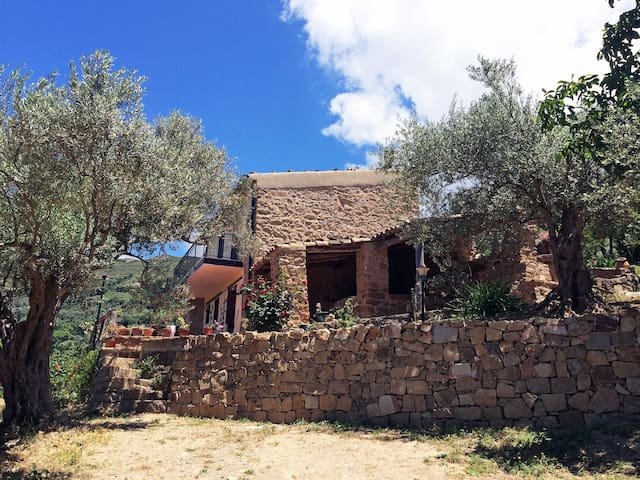 "Sicily Country house ""La Chiana"" - Pettineo - Vila"