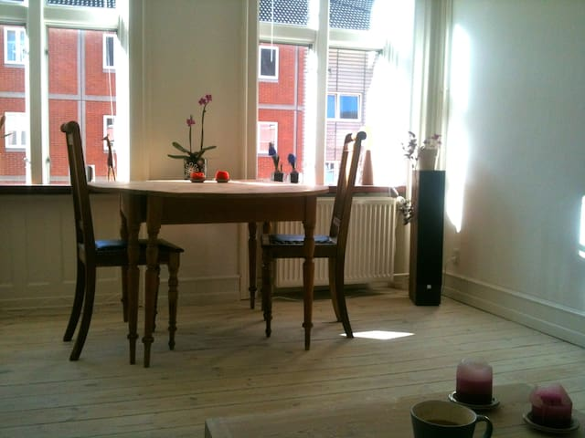Really cozy apartment with 2 bikes - Frederiksberg - Wohnung