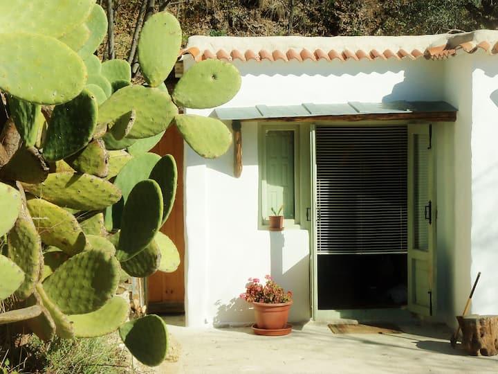 #Casa Verde