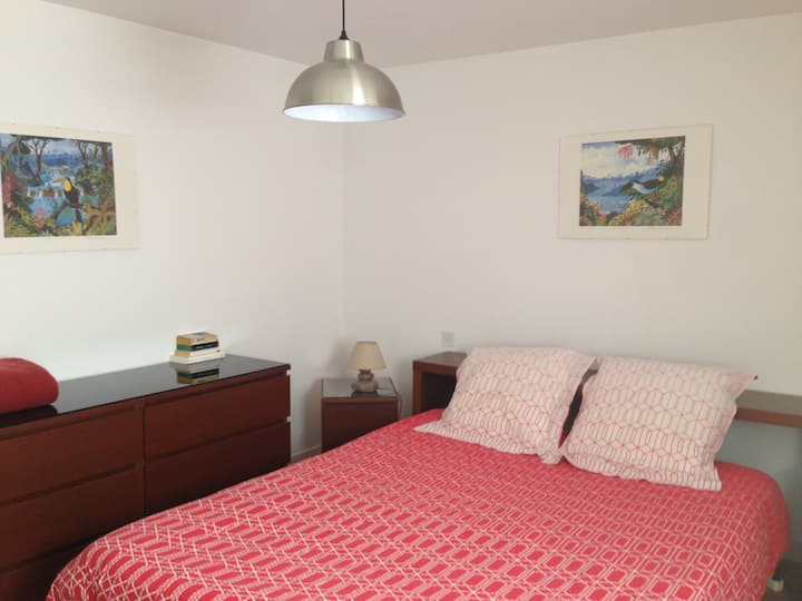 Apartment homestay (in total privacy)