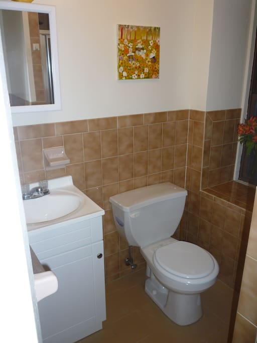 This is the studio bathroom.  Shower is also a part of the bathroom not shown in photo!