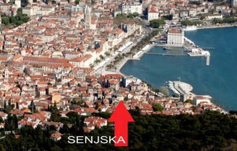 Stay in the heart of Split