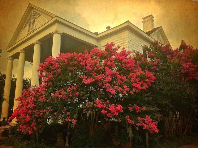 Near Lafayette • 1899 Stonewood Plantation Bdrm #1 - Opelousas - Huis