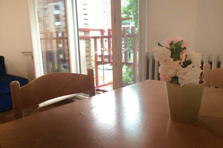 Studio Apartment in the City Center of Novi Sad