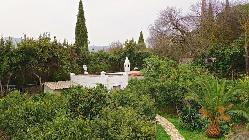 Gazelle Cottage house - Bitez Belediyesi - Huis