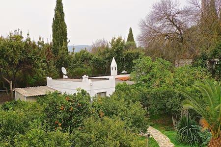 Gazelle Cottage house - Bitez Belediyesi