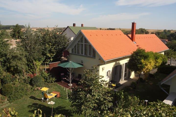 A piece of paradise in Hungary!  - Székelyszabar - Casa