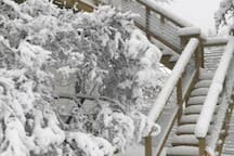 The stairs to Topside.  We LOVE snow!!  No worries, we shovel and sand/salt the stairs.