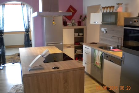 Comfortably high standard apartment - Skofja vas