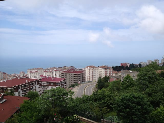 Luxurious villa in nature/Deniz manzarali villa