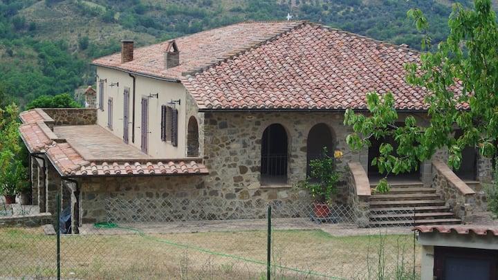 Le piccole Vigne (Vignine)  a Seggiano