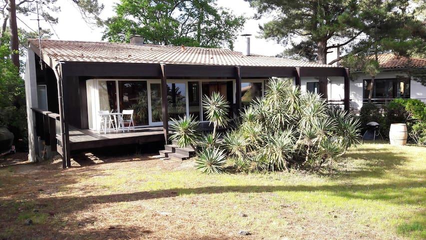 Villa  Petit PIQUEY -CAP FERRET Pointe aux chevaux