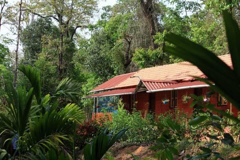 The Guru Home Stay - Room 1