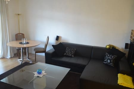 new flat, near Airport(20)City(15)shopping mall(2) - Wallisellen - Apartemen