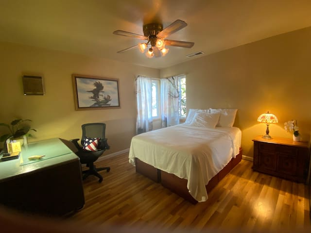 Clean/Quiet/Friendly (Bed 2) in Santana Row area
