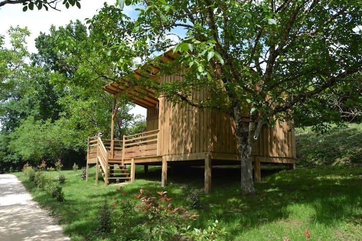 Cabane au Moulin des Sandaux - Saint-André-et-Appelles - Cabane