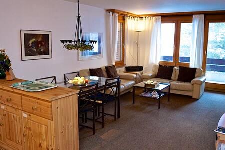 Cozy Apartment - 15min to Zermatt - Täsch - Huoneisto