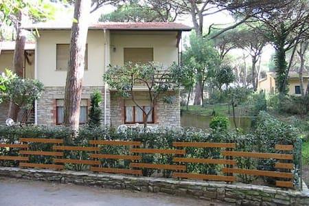"""""""Polissena1"""" vicino al mare e al centro - Marina di Castagneto Carducci - Apartment"""