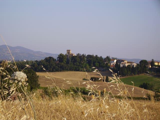 Casa Giulia - Pieve Santa Luce - Lägenhet