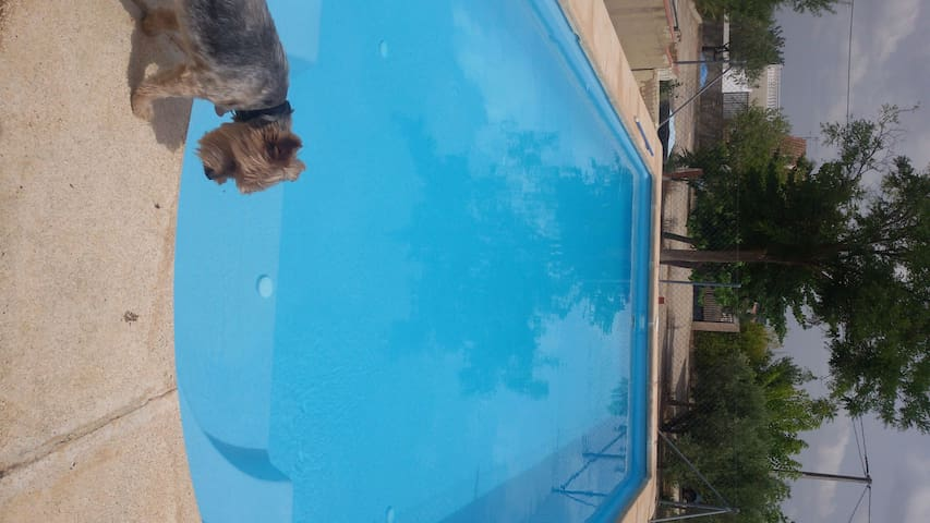 Country house all confort with pool and paellero
