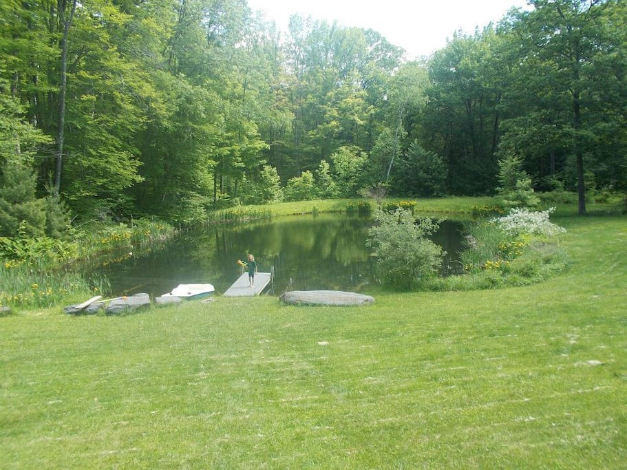 Spring fed swimming pond offers refreshment and visits with turtles, trout, frogs, & dragonflies. Be among the first guests in our studio, mid-July.  More photos coming!