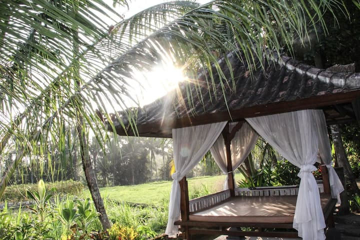 Balinese Rice Terrace Bungalow  - Tabanan