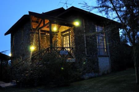 Quintessential, Serene Cabin
