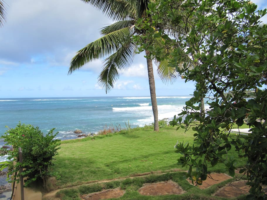 View of surf spot from lanai and living room