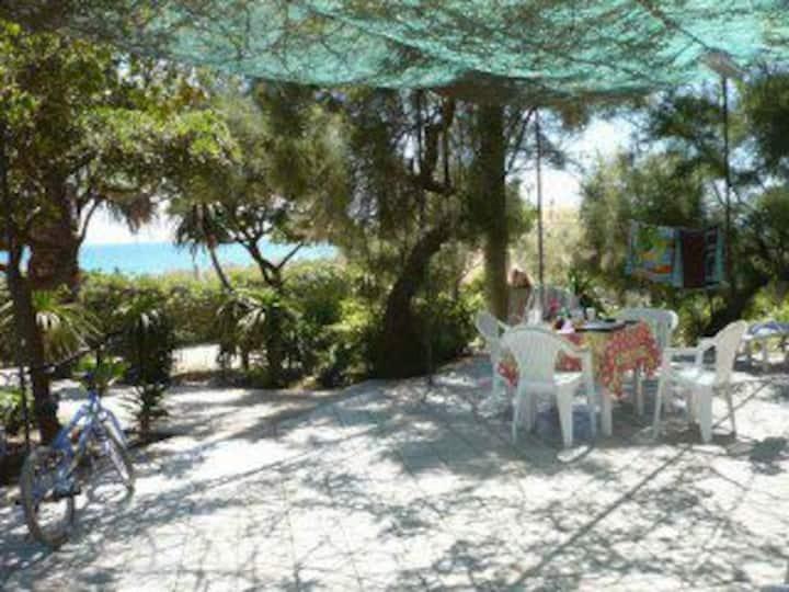 """The Aloe's  Beach House """"La Rina"""""""