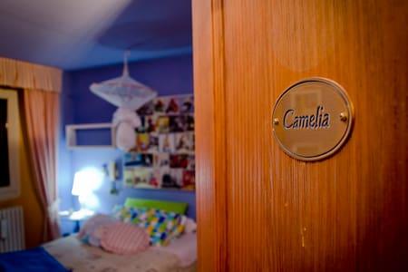"Room ""Camelia"" with balcony - Domodossola"