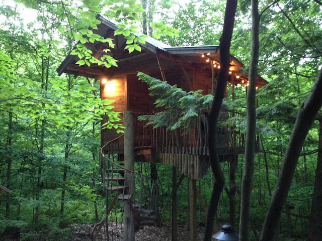 An Adirondack Tree House Retreat - Middle Grove - Ağaç Ev