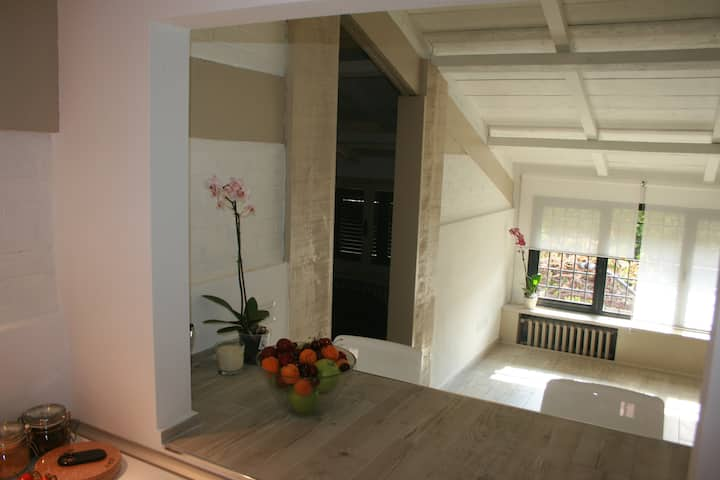 Ponte Milvio apartments 39c