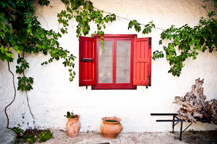 Charming B&b in parco Alta Murgia, Cooking & Tour