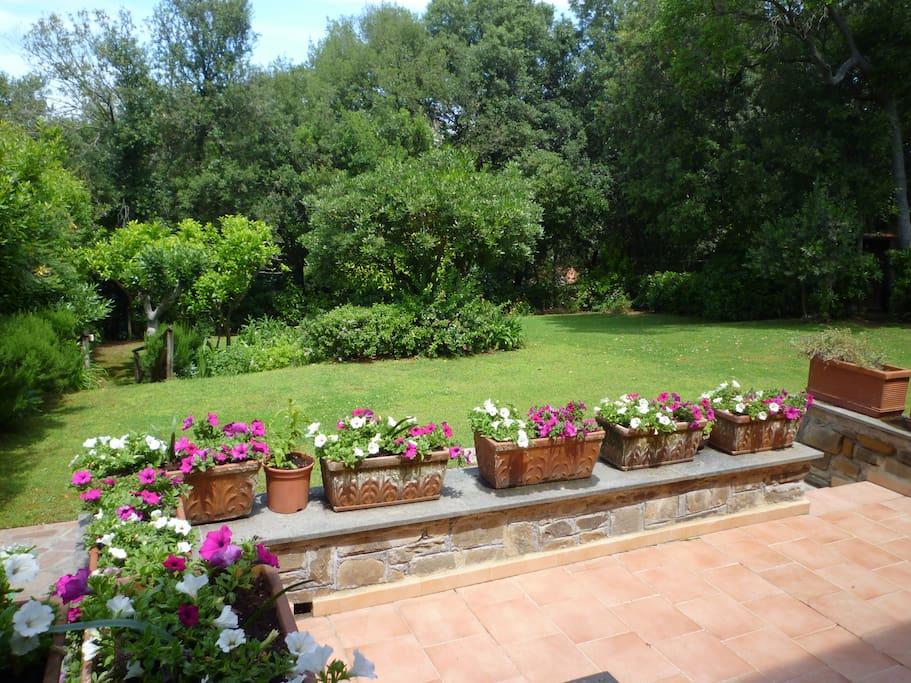 Terrazza e giardino