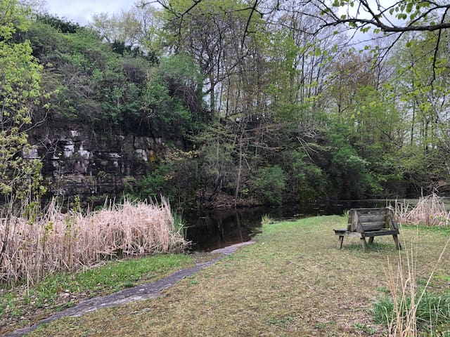 Redstone Quarry—natural area in the South End.