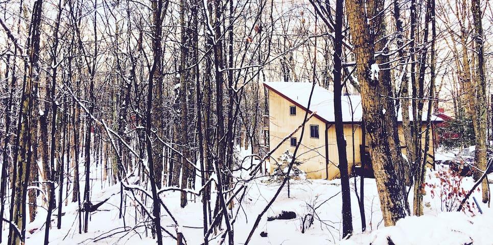 Vintage Pocono Mountain House - Hawley - Hus